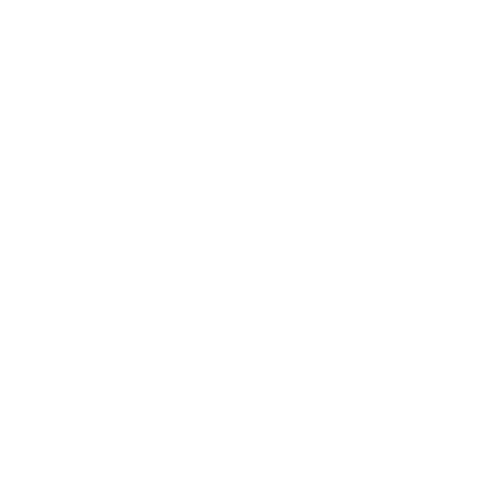 wordpress paket