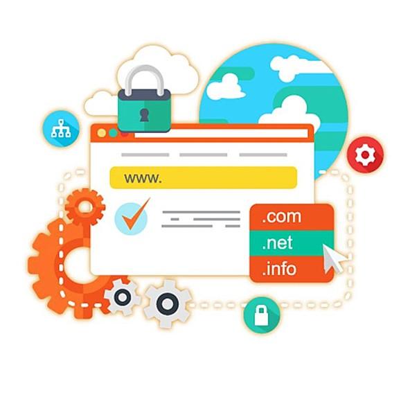domain örnekleri